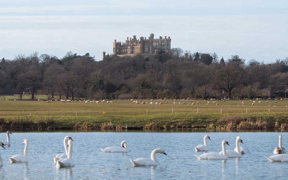 Belvoir Castle Estate Shoot Season
